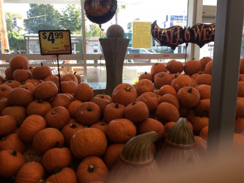 Supermarket Pumpkins