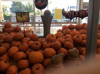 Supermarket Pumpkins